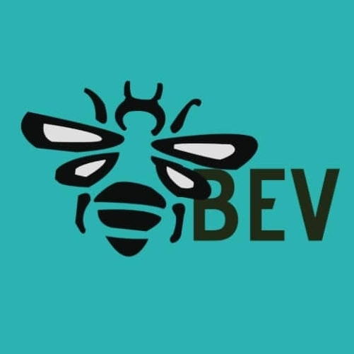 Bidi Logo